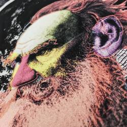 The earl. ____________________  #thinkprintru #delonatelo #ecofashion #art #artprint #print #picture #drawing #drawthisinyourstyle #details #colors #art #wear #ecology #печать #печатьнафутболках #печатьнаодежде #печатьспб #экостиль